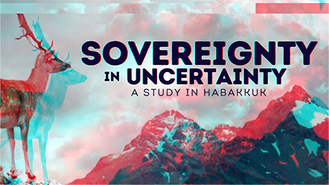 Sovereignty in Uncertainty